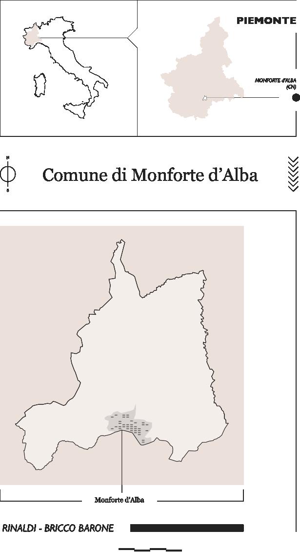 Vigneti Rinaldi e Bricco Barone a Monforte d'Alba